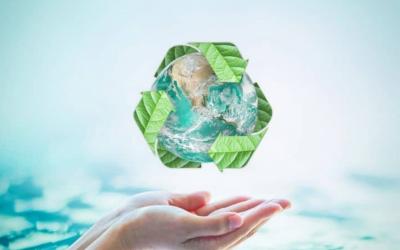 Top 6 Energy-Saving Tips for an Eco-Friendly Life